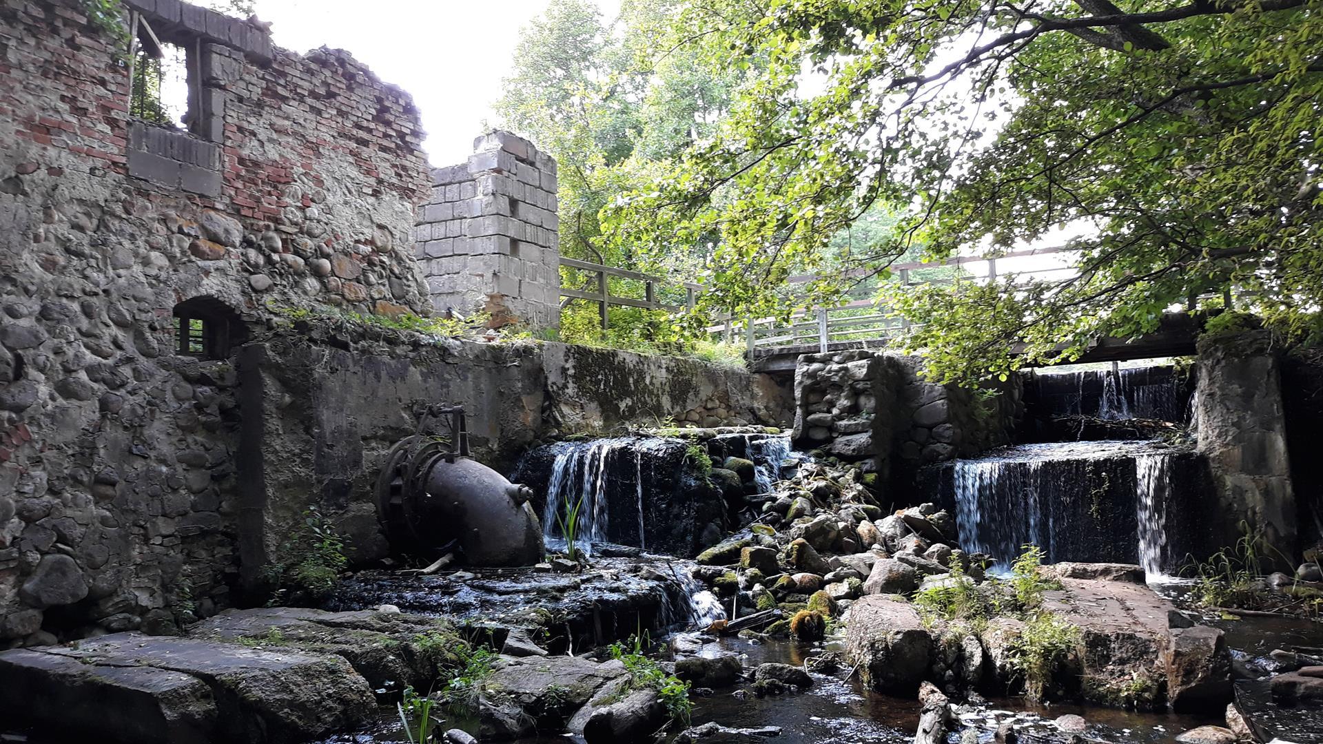Suwalski Park Krajobrazowy - Turtul